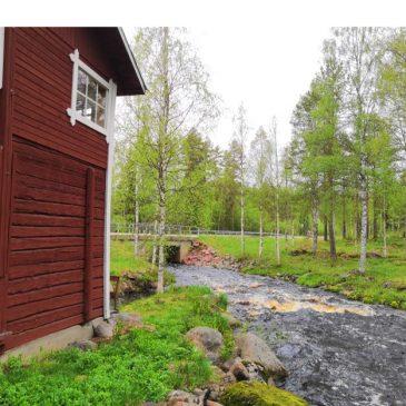 Kesäkahvila 2019 Selänpäänjoen myllyllä