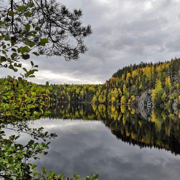 Pylkön ääni järjesti retken Etelä-Konneveden kansallispuistoon