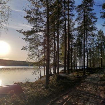 Pylkön Ääni tiedote 3.6.2020